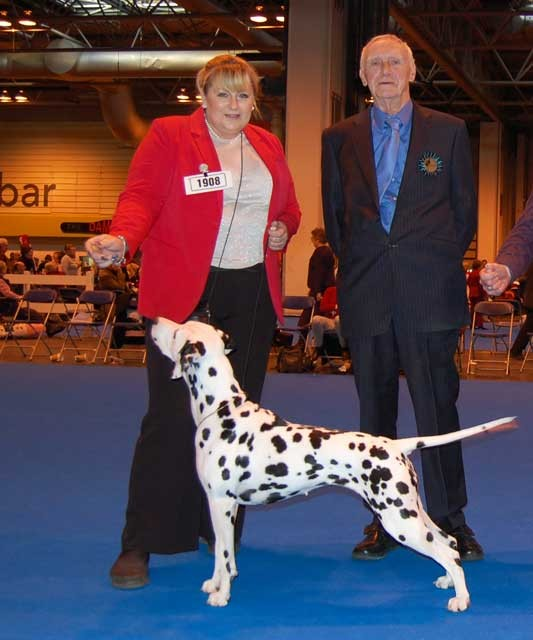 Best of Breed & Group 4 (Judge Mr G Corish), Dalliviro Reba Mac At Ellemstra, Simons & Emmett